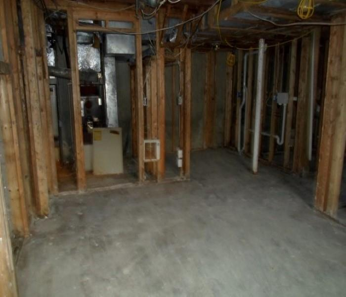 Mold Remediation in Finished Basement After