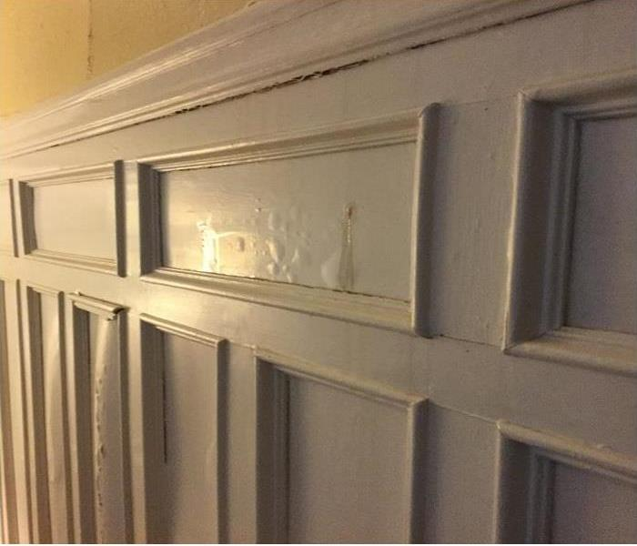 Wainscoting Affected by Ice Dams