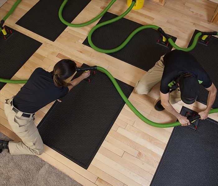 SERVPRO technicians placing dring equipment