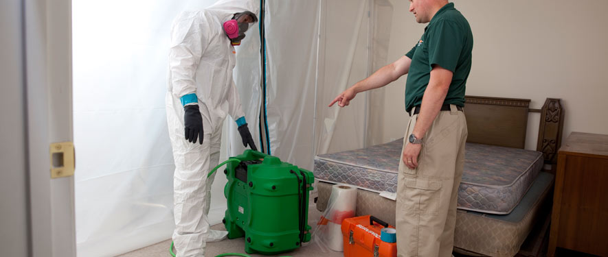 Lynnfield, MA mold removal process